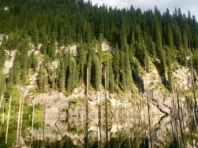 kaindy_lake_kazakstan2